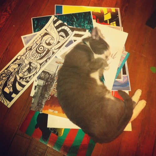 Starsky loves my art