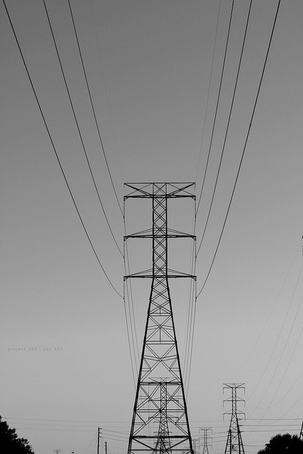 Line Giants on Flickr.