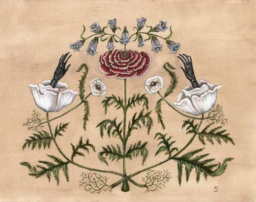 art paintings fantasy art flowers in art poppies female artists