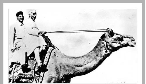 "From TOI""I will lead the country and I will lead this camel"" - JLN (according to AES)"