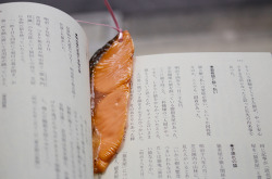 Fake food bookmarks!More: http://www.spoon-tamago.com/2016/05/26/japanese-realistic-fake-food-bookmarks/