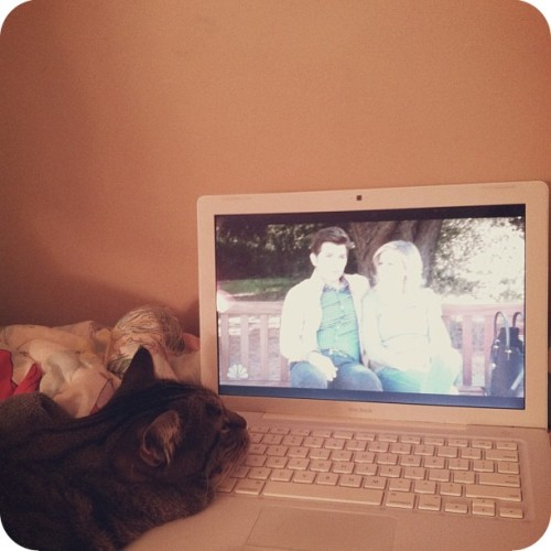 Crouton is a fan of Parks & Rec.