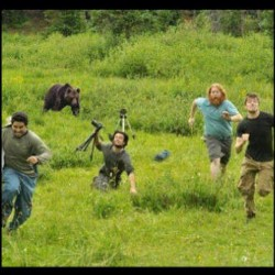 Run Run Run - Bear Chase!