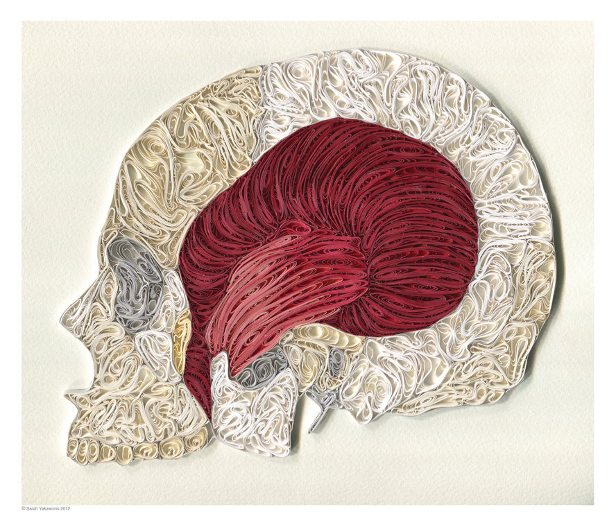 wnycradiolab:  stufftoblowyourmind:  Excellent anatomical quilling art by Sarah Yakawonis.  Love this kind of stuff.