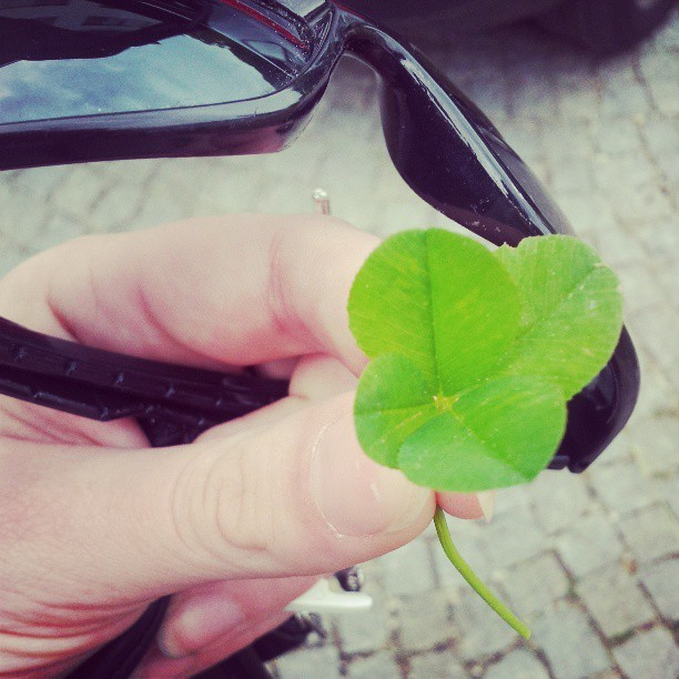 four-leaved clover! #luckyone #fuckingawesome