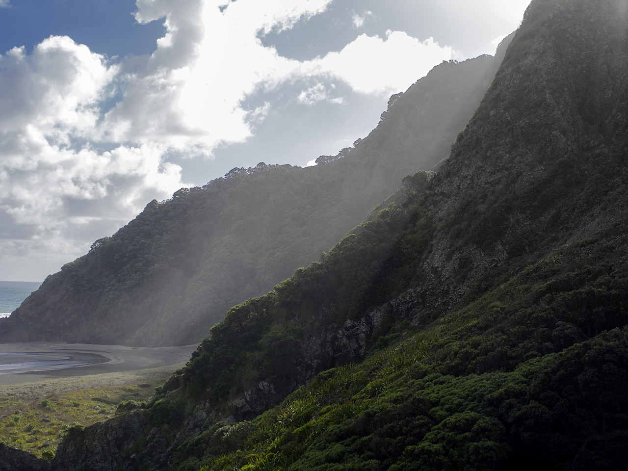 The hills of Karakare Beach, New Zealand. Jurassic park except we have birds that may or may not kill on sight when given the attack word. Olympus OM-D EM-5