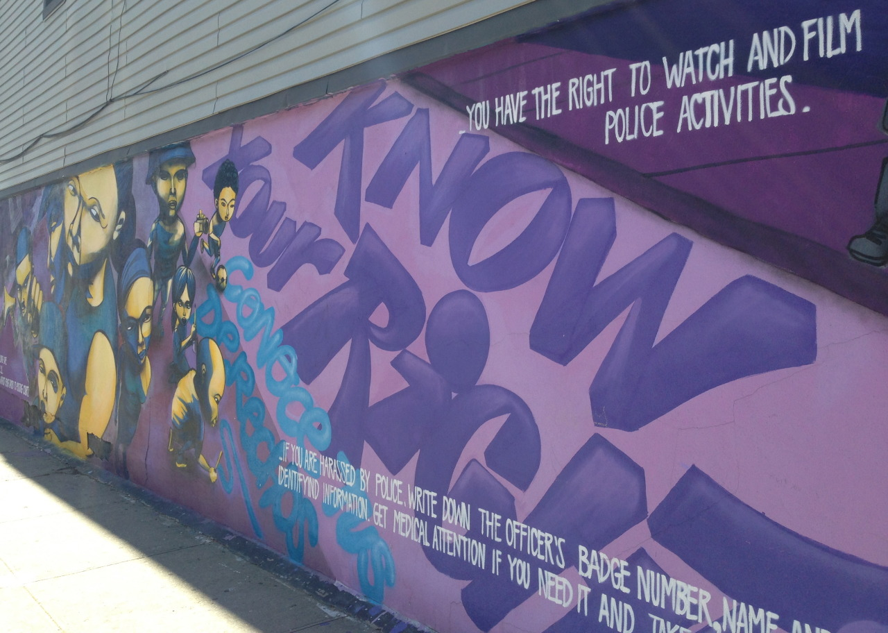 A Flatbush mural informing residents of their rights against police. Picture: Theron Mohamed.