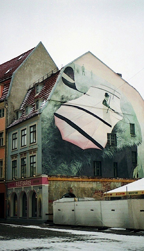 | ♕ |  Big plane mural in Tallinn, Estonia  | by © Kseniya Segina