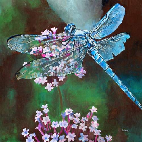 Blue Dragonfly Around the world there are various understandings of the meaning of the Dragonfly. In Japan, they are revered and respected, being symbolic of happiness, strength, courage and success. The Dragonfly is an important cultural symbol and was believed to be the spirit of the rice plant and a harbinger of rich harvests. According to the Zuni of North America, the Dragonfly is a messenger who carries our prayers to Spirit World.Click the links to see all of my Redbubble Dragonfly Paintings,Dragonfly Photography, Dragonfly Greeting Cards, Dragonfly Stickers, Dragonfly Tees, and Dragonfly T-Shirts at ArttowearClick the links to see all of my Redbubble Wild Garlic Paintings, Wild Garlic Photography, Wild Garlic Greeting Cards, Wild Garlic Stickers, Wild Garlic Tees, and Wild Garlic T-Shirts at ArttowearMy artwork, photography and design can be found in my Zazzle Galleries. Check out customizable gifts and collectables at Female Contemporary Art, Arttowear and Rottweiler Gifts Follow links to 3DRose for customizable Photography and Acrylic Art