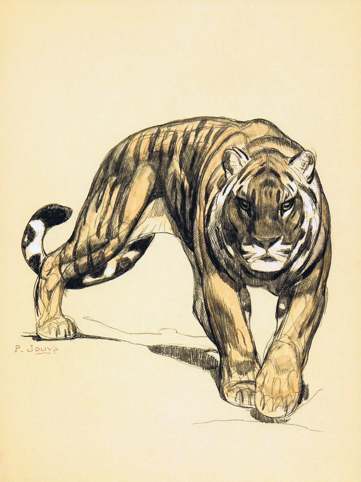 Things of beauty I like to see, Tigers by Paul Jouve (1878 ...
