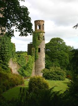visitheworld:  The ruined towers of Blarney Castle, Ireland (by asajernigan).