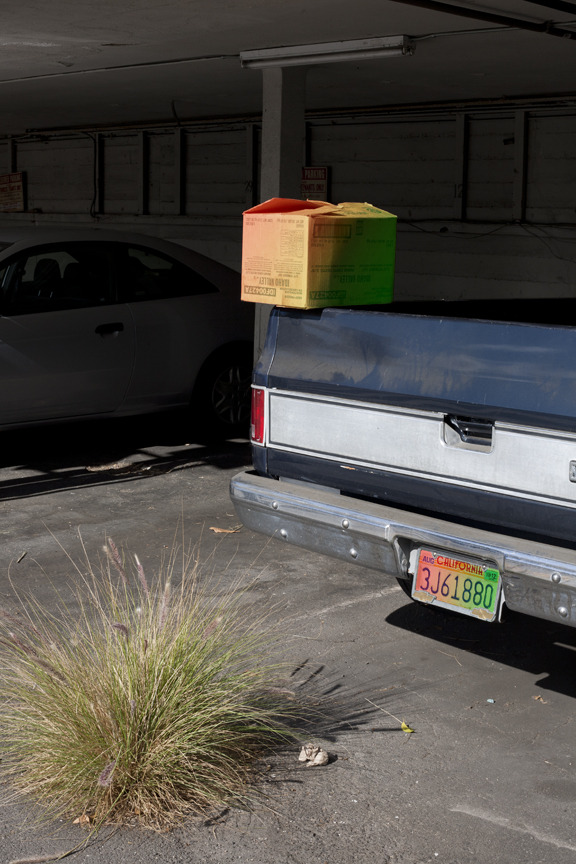 thejogging:  Rasta Ombre Box on Truck with Rasta Ombre Plate, 2013 Vibe Promoter ♓