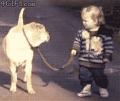 "Dog Patiently Waits for Kid to Stop Jumping in Puddle [Click to animate] ""I told you getting a baby would be a lot of responsibility""-dog's mom."