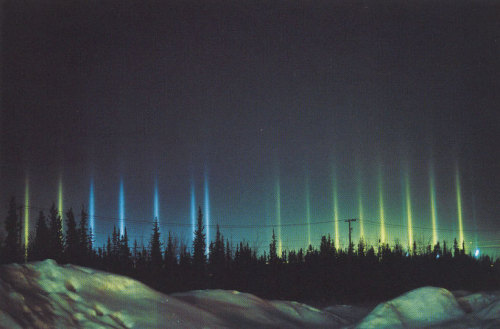 Colorful light pillars  How can an aurora appear so near the ground? Pictured above are not aurora but nearby light pillars, a local phenomenon that can appear as a distant one. In most places on Earth, a lucky viewer can see a Sun-pillar, a column of light appearing to extend up from the Sun caused by flat fluttering ice-crystals reflecting sunlight from the upper atmosphere. Usually these ice crystals evaporate before reaching the ground. During freezing temperatures, however, flat fluttering ice crystals may form near the ground in a form of light snow, sometimes known as a crystal fog. These ice crystals may then reflect ground lights in columns not unlike a Sun-pillar. In the above picture, the colorful lights causing the light pillars surround a ice-skating rink in Fairbanks, Alaska.  Image credit: Walter Tape (Alaska Fairbanks), Figure 8-1, Atmospheric Halos