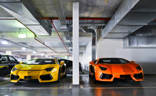760mph:  crash—test:  Bright Bulls (by DL599)