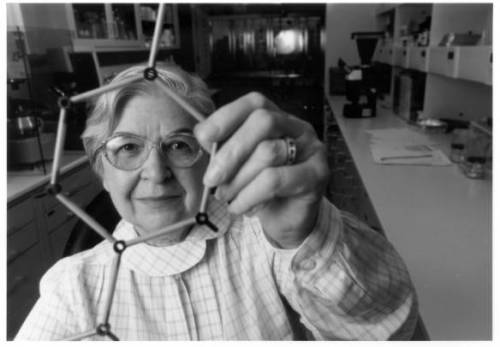 hagleydigital:  Stephanie L. Kwolek, developer of Kevlar (circa 1995) While working with DuPont Stephanie Kwolek developed the first liquid crystal polymer which provided the basis for Kevlar brand fiber.