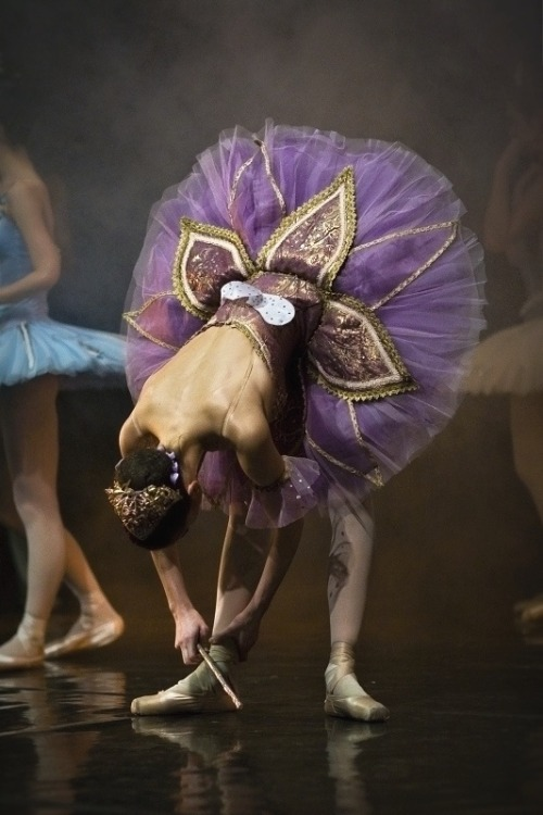 ballerina67:  Lilac Fairy…Sleeping Beauty!