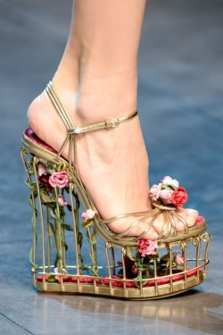 macys:  Everything is coming up roses in these Dolce & Gabbana platforms. Sooo sweet!  Omg!