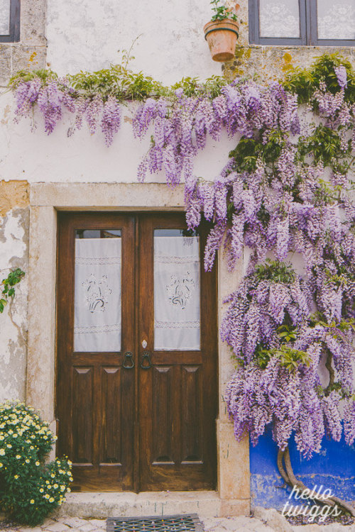 all-things-bright-and-beyootiful:  Wisteria in Portugal ~ by hellotwiggs