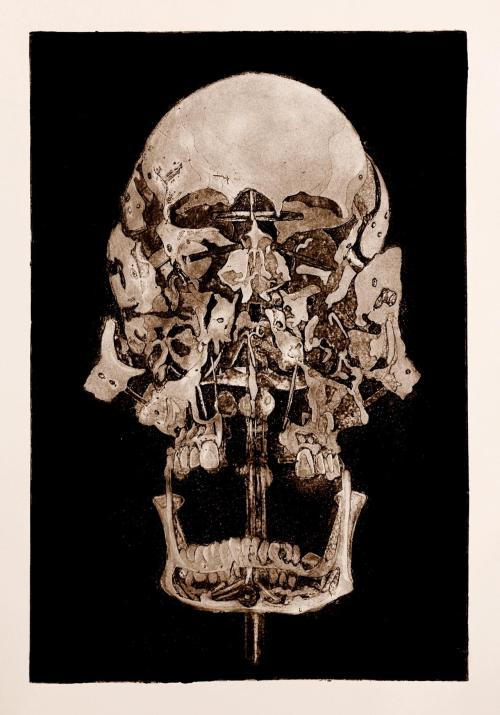 jesscrossdavis:  Jess Cross Davis, Beauchene Skull, Hard Ground Etching with Aquatint, 18 by 12 inches, 2012 Here is the clean print finished and linked to my site!