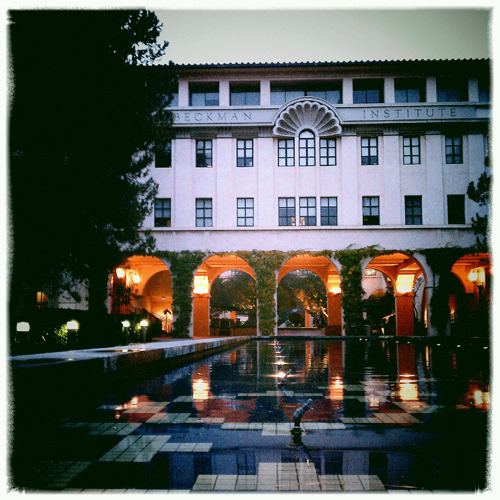 lloverpasadena:  Evening at Caltech…  colleges always strike me as extremely beautiful places