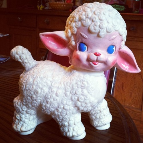 babydearr:  ameliabutter:  Got this perfect lamb baby today for $4. So precious!  bb