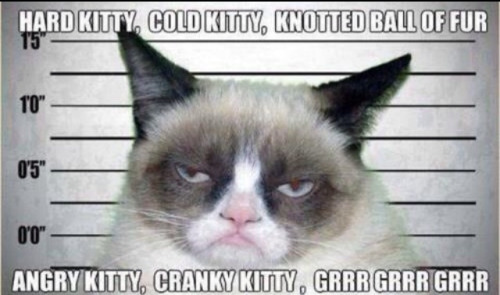 Love this version of soft kitty, but would Sheldon?