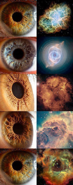 polishpowersawich:  Eyes and nebulas