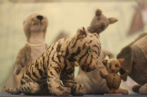 whatwonderfulthings:  Christopher Robin Milne's original stuffed toys on display at the New York Public Library. (Photo source) Our Old Things issue will go live this June!