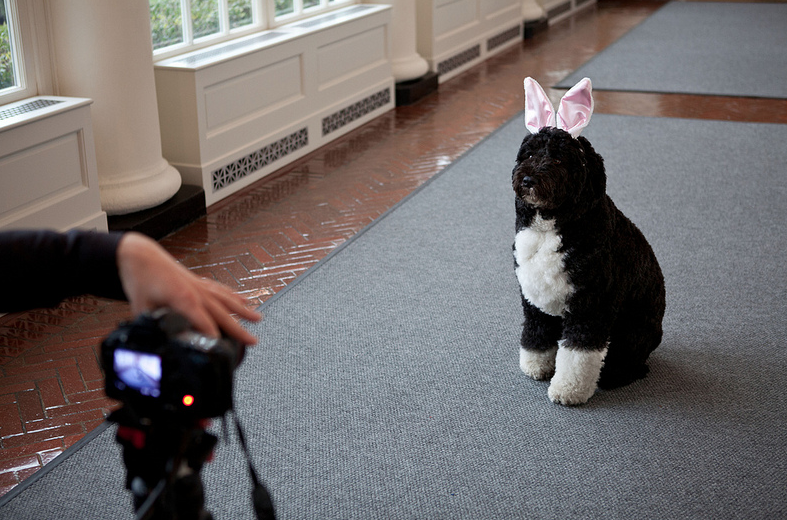 Caption this! (Photo: CC BY: The White House)