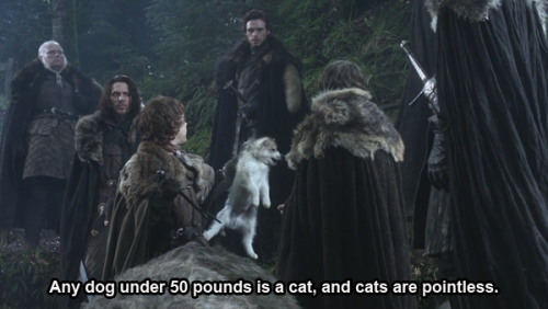 Ron: Any dog under 50 pounds is a cat, and cats are pointless. Emergency Response - Episode 5.13