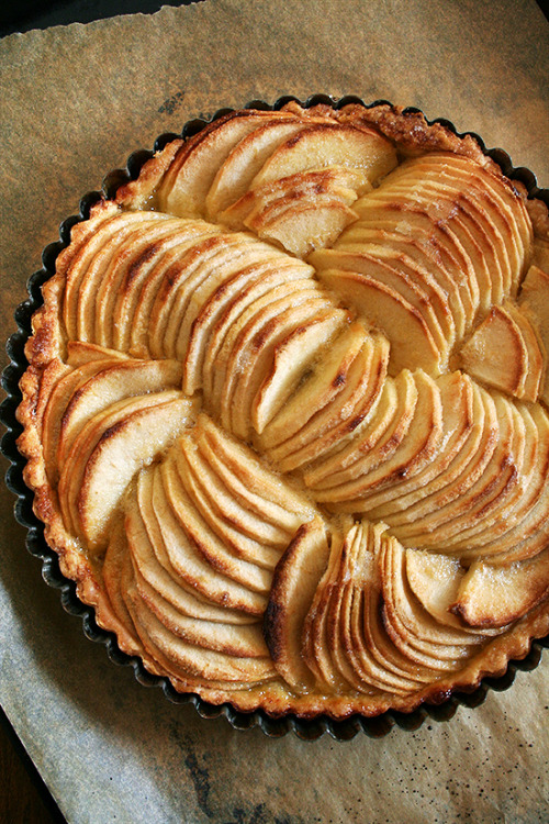 yummyinmytumbly:  French apple tart, just baked