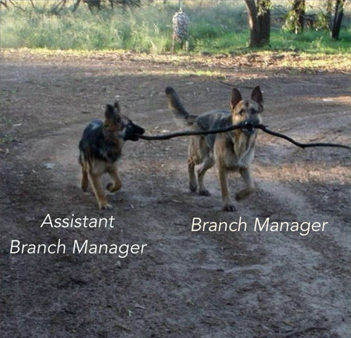 Assistant TO the branch manager [tastefullyoffensive:via]