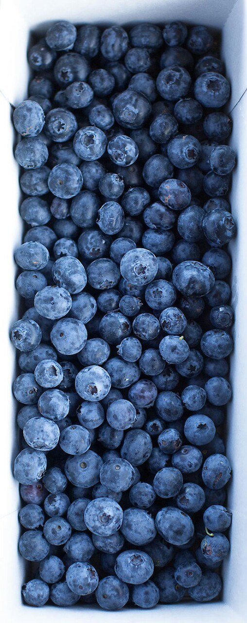 beautifulpicturesofhealthyfood:  Blueberries: The Ultimate Superfood - Just 100g (4oz) of blueberries contain the same amount antioxidants as five servings of other fruit and vegetables. Read more…