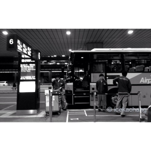 [Night in Tokyo, Japan]02: Bus station, Narita airport, in Japan  (at 成田国際空港 第2ターミナル (Narita International Airport Terminal 2))