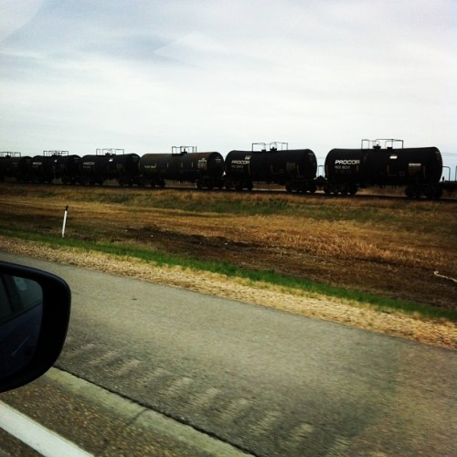 Driving alongside the train #choochoo #roadtrip #Lilywaswhiningoutthewindow