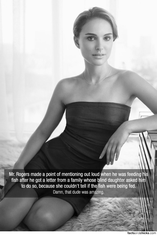 factsandchicks:  Mr. Rogers made a point of mentioning out loud when he was feeding his fish after he got a letter from a family whose blind daughter asked him to do so, because she couldn't tell if the fish were being fed. source