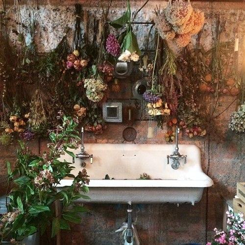 Home herb flowers cabin house garden kitchen plants witchcraft HERBS