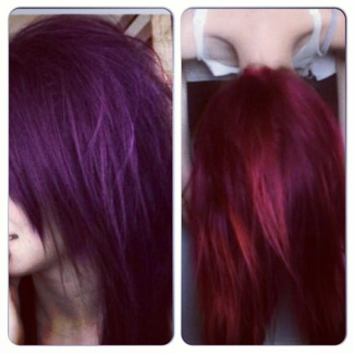 I can't choose a hair color HELP!! #red #purple #dark #hair #color #help