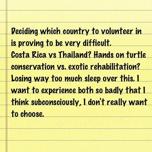 #decisions #indecisive #volunteer #costarica #thailand #wildliferehabilitation #conservation #turtles #turtleconservation #wildlifeconservation #choices #knowledge #experience #love_nature #ilovenature #natureonly #realnature #reallife #life #wildnature