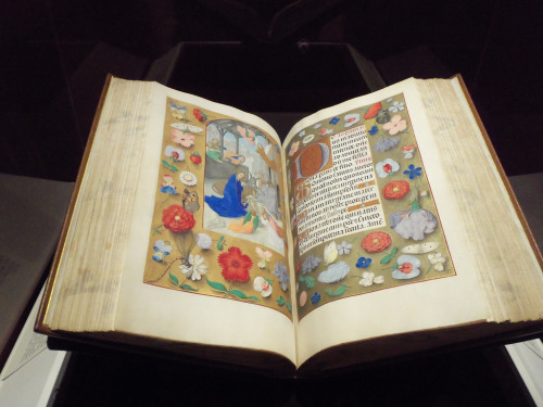jothelibrarian:  Pretty medieval manuscript of the day is a lovely photograph of a manuscript on exhibit at the Cleveland Museum of Art. You can read a little more about this book here, and on the museum website. Image source: Photo by nuclearmse and Creative Commons licensed via Flickr.  This is beautiful, and it makes me want an illuminated version of EVERYTHING.