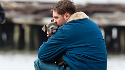 nedhepburn:  Tom Hardy and a puppy, obviously.