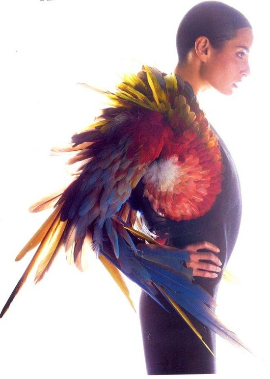 madamedevereshideaway:  Polly wants a cracker Bolero by Jean Paul Gaultier, photographer unknown
