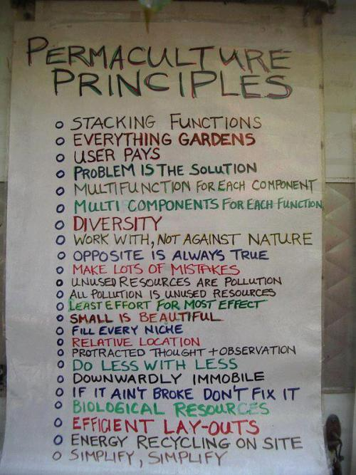 sustainourfuture:  LIVE BY THESE AND YOU WILL DO WELL :)  I wish there was more explanation about this list! I need a powerpoint link, I think!