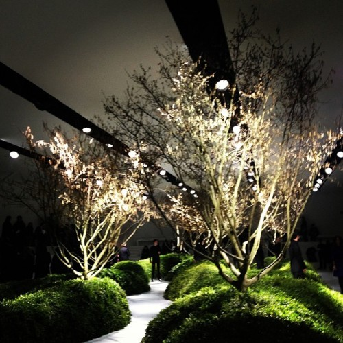 businessoffashion:  An organic scene for @Dior Couture  (at Jardin des Tuileries)