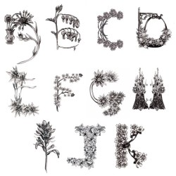 deborahballinger:  Floral alphabet #wip #illustration #typography #drawing #alphabet #pencil #nature #flowers