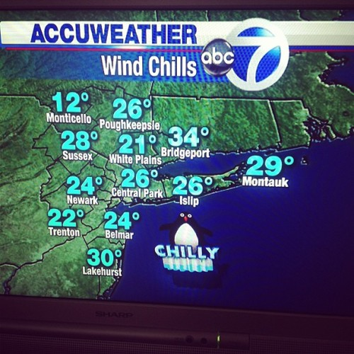 I hate you chilly penguin…I want to put away my puffy coat! (at UWS NYC)