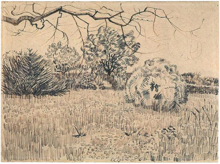 """Field of Grass with a Round Clipped Shrub"" by Vincent Van Gogh"