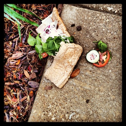 Someone dropped a sammich outside my work. It broke my heart to see it