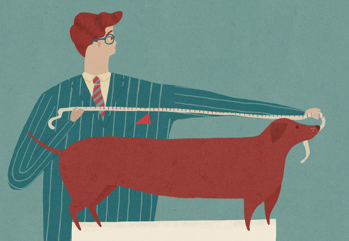 naomiwilkinson:  a chap measuring a sausage dog
